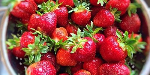 イチゴの世界