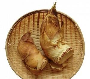 タケノコのレシピ
