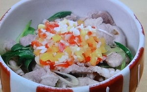 渡辺美奈代の塩ネギ丼