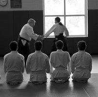 合気道、格闘技、柔道