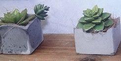 100均DIYで植木鉢2