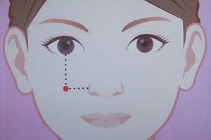 化粧のチーク