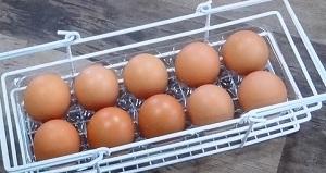 卵用シンデレラフィットケース