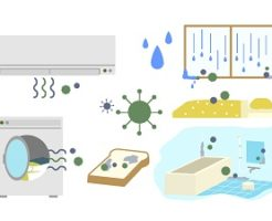 カビ、エアコン、パン、お風呂
