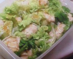シューマイ風白菜包み