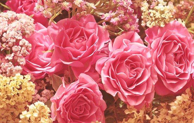ばら、バラ、花、